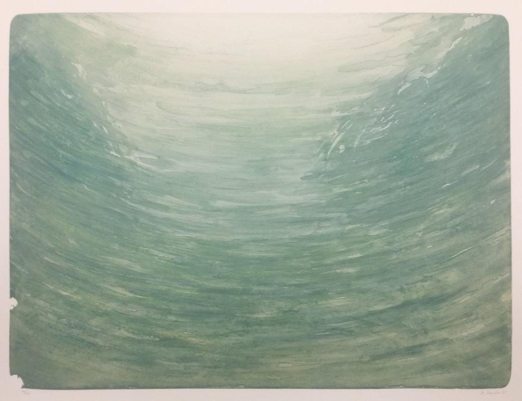 Martin Bouda: Mlha v lese