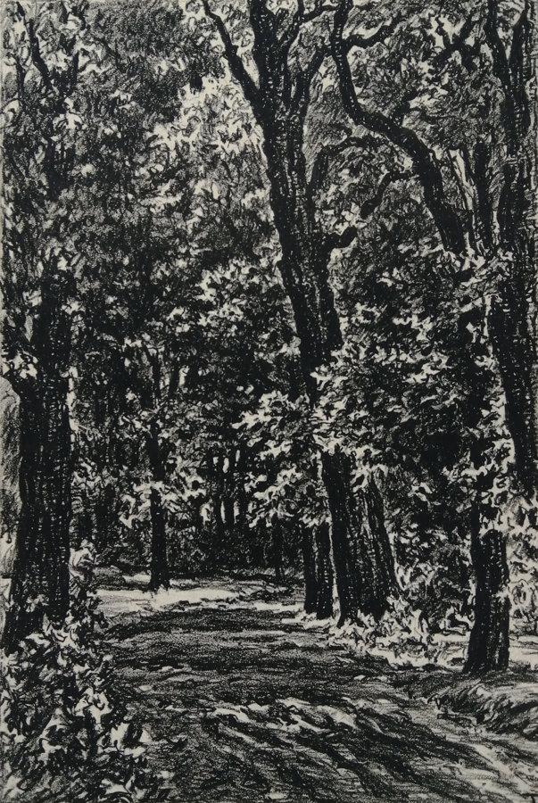 Karel Tondl: V parku
